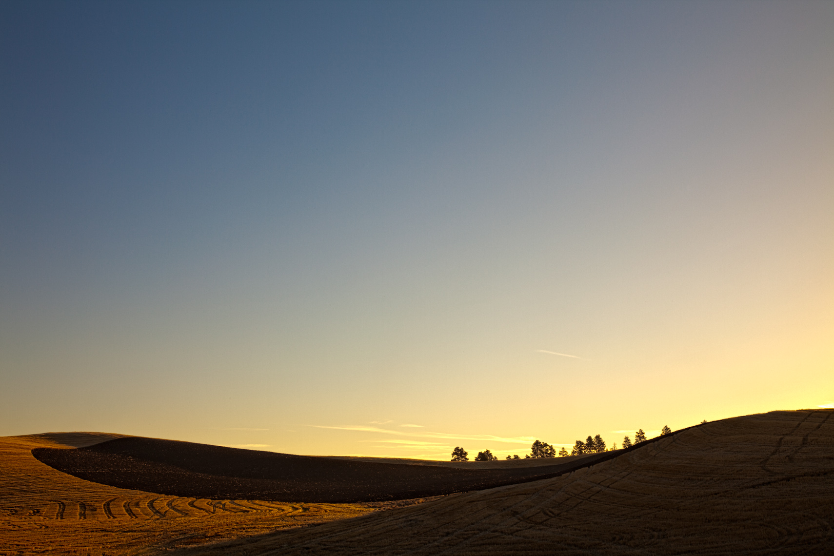 palouse sunrise.jpg